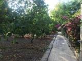 ea_PerLaMare_Rabat_960_01